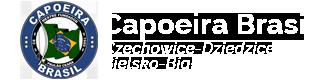 Capoeira Brasil - Instrutor Mata